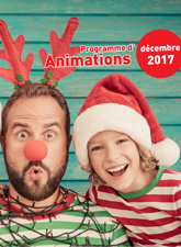 2017-12animations