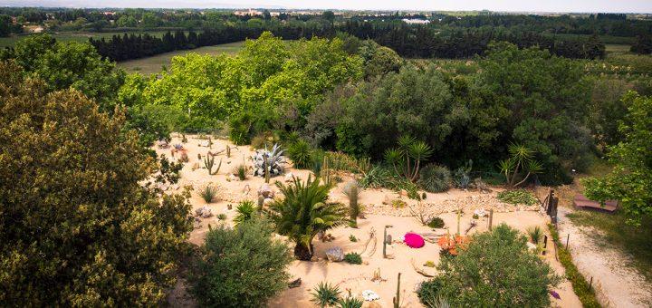jardin xérophyte vu de haut